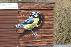 Blue Tit Nest Box Mural (queeny63) Tags: elements