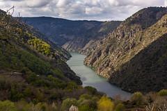 canns do Sil (hilarioperez) Tags: natureza granangular ourense riolima paisaxes riosil caonesdelsil canonsdosil hilarioperez
