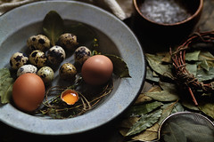 Eggs (vokkilaine) Tags: food dark easter daylight egg foodporn eggs foodphotography