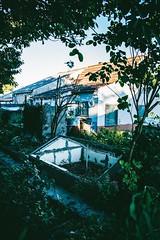 something to love and work to do (ivvy million) Tags: old light house nature vertical architecture germany garden deutschland evening abend countryside backyard garten rlp rheinlandpfalz rhinelandpalatinate 18105mm nikond7100 ivvymillion