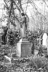 Highgate Cemetery (Francis Mansell) Tags: tree london monochrome cemetery grave statue angel blackwhite spring ivy gravestone highgate statuary plinth highgatecemetery