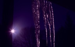 Icicle (Josh Rokman) Tags: winter sun purple icicle nikond7000