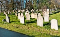 Anglų lietuvių žodynas. Žodis gravestone reiškia n antkapis lietuviškai.
