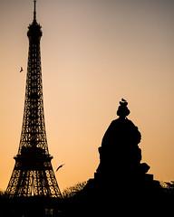 December 29, 2015 - 272 mm - #145.jpg (alexmerwin13) Tags: favorite paris france tower silhouette architecture evening europe flickr ledefrance shot dusk top eiffeltower favorites eiffel figure fr topshot tumblr