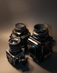 two ladies & a girl (k.hendrik) Tags: 6x6 film hasselblad 6x7 swcm analogcamera mamiyarz67proii rolleiflexsl66se