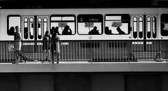 Zurich City, Tram nr. 5 Laubegg! (Swiss.Piton (BH&SC)) Tags: zürich zuikolenses zd olympuszd75mmf18microfourthirdslens 📷olympusdigitalcameraomdem5iizdm75mmf18 olympusomdem5ii microfourthirdsphotography m43photography streetphotographymagazine streetshot zurich people urban ibringmycameraeverywhere justmeandmycamera blackandwhite niceshot noiretblanc schweizerphotographen schwarzundweiss schwarzweissfotografie swissamateurphotographers tram everyday city scene 白黒 black white mono bnw