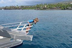 wonder (BarryFackler) Tags: ocean boy sea water ecology youth outdoors island hawaii polynesia bay coast boat marine waves ship child pacific outdoor shoreline vessel palmtrees pacificocean coastal shore bow lad tropical coastline bigisland nautical railing condos kona saltwater kailuakona 2015 hawaiianislands slidingboard motorvessel konacoast hawaiicounty fairwind keauhoubay hawaiiisland keauhou sandwichislands snorkelcruise westhawaii northkona fairwindii fairwindcruises barryfackler barronfackler