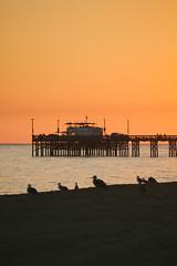 Ruby's Sunset (zamax4) Tags: california sunset summer sky usa color beach canon eos rebel films diner newport balboa rubys t3i vsco