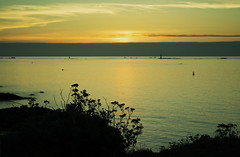 20150809-107_St  Malo_Sunset Silhouette (gary.hadden) Tags: sunset seascape landscape evening silhouettes saintmalo stmalo seedheads