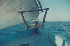 Sail away (Kelly Marciano) Tags: ocean africa blue sea film water analog 35mm tanzania horizon indianocean grain depthoffield sail zanzibar analogue canona1 dhow filmgrain adox100 colorimplosionfilm