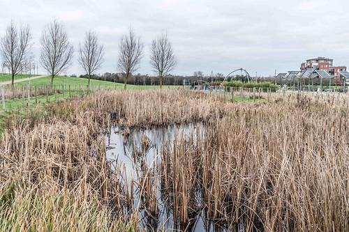 Wind Powered Public Park In Clongriffin Dublin [Father Collins Park]-110972