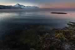 Mist over icy fjord (Christian Uhlig) Tags: winter mist cold foggy arctic algae polar icy nordnorge tang mrketid troms darkperiod northernnorway fjordice malanagen