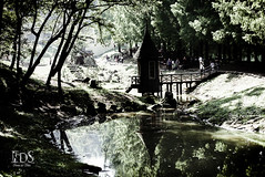 Hanno Saitama (ivoneijp) Tags: park trees lake reflection tree nature japan forest nikon outdoor   ki nihon lightroom japao  nikond600 aoarlivre tranquilityscene
