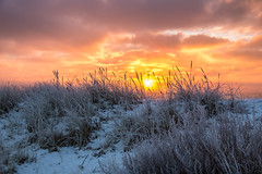 Frosty sunrise (Infomastern) Tags: winter cold vinter frost rime geolocation rimfrost kallt geocity camera:make=canon exif:make=canon skateholm geocountry geostate exif:lens=efs18200mmf3556is exif:focallength=32mm exif:aperture=50 exif:isospeed=100 camera:model=canoneos760d exif:model=canoneos760d