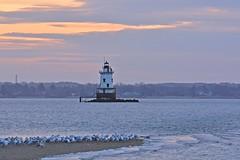 Lighthouse (E. Aguedo) Tags: ocean new england sky seagulls lighthouse sunrise island sand rhode warwick