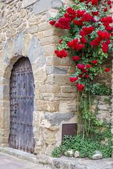 Spanish Roses (AnnaPirata) Tags: flowers rose spain stonework catalonia catalunya monells