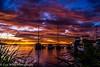 Warners Bay -02616 (wlyn64) Tags: sunrise sydneyaquarium vivid2015