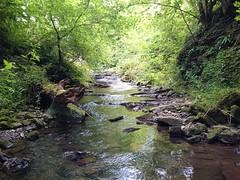 Pendleton Brook, Clitheroe