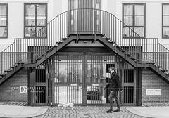 Golden Cross Mews, Notting Hill, London, UK (davidgutierrez.co.uk) Tags: street city uk greatbritain travel windows light red england people urban blackandwhite bw dog white black streets london art monochrome beautiful architecture stairs buildings photography nikon europe cityscape photographer unitedkingdom britain capital 85mm structure londres londra bnw nottinghill ladbrokegrove  londyn    d810 nikon2485mm nikond810 davidgutierrez strideby londonphotographer davidgutierrezphotography nikon2485mmf3545gedvrafsnikkor