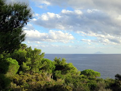Mild Autumn Sunset (Aristokrat_) Tags: blue autumn light sunset sea summer italy sun green water beautiful forest island elba europe mediterranean beautifullight late monte mediterraneansea christo mild latesummer montechristo beautifulearth