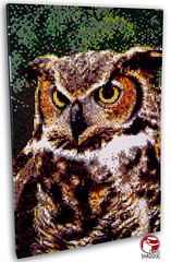 Great Horned Owl (Dave Shaddix) Tags: