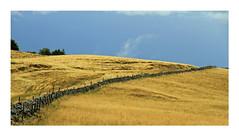 L'orage en Aubrac (Yvan LEMEUR) Tags: france landscape paysage extrieur orage ambiance aveyron aubrac mtorologie muret lozre muretdepierressches