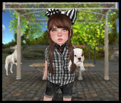 Taking My Dog to the Vet with Foreign (delisadventures) Tags: park street city dog white black bus cute dogs animal puppy children outdoors sweater cool puppies toddler child vet stripes bulldog busstop sl stop secondlife tiny bow second checkers foreign plaid veterinarian doggie rocco headband trinkets td rocko ninety spellbound toddle slblog slfashion giantbow slbabe secondlifefashion slkids slevents secondlifeblog slaccessories slfamily seconlifefashion slfashionblogger slfashions slbaby slfashionblog tinytrinkets slblogger barberyumyum secondlifefashionblog toddleedoo toddleedoos slfashin tweeneedoo slbog slfashino foreigncooley foreignxcooley slblogg foreignandcooley toddleddoo