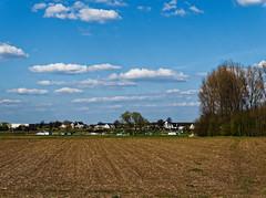 Rhein in Köln-Langel / Im Hintergrund Leverkusen-Hitdorf (KL57Foto) Tags: germany april nrw rhein rheinland 2016 langel kölnlangel kl57foto
