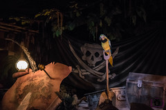 Pirates Parrot (Spots & Stripes Photography) Tags: disneyland piratesofthecaribbean disneylandresort darkride disneylanddiamondcelebration