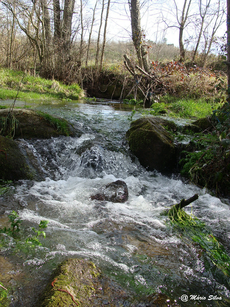 Águas Frias (Chaves) - ... a água corre com pressa no regueiro ...