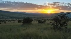 sunrise over the northern Serengeti (charlesgyoung) Tags: africa tanzania nikon safari d3 serengetinationalpark charlesyoung nikonfx nomadtanzania karineaignerphotographyexpedition