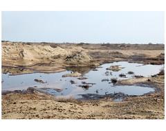 IMG_7347 (Schamsz) Tags: landscape soil oil poison alat lt