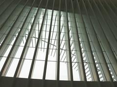 Oculus #1 (Keith Michael NYC (1 Million+ Views)) Tags: nyc newyorkcity ny newyork path manhattan worldtradecenter calatrava wtc oculus santiagocalatrava downtownnewyork downtownmanhattan transportationhub 1wtc oneworldtradecenter