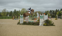 Jumper 1 (William_Doyle) Tags: horses horse cold rain clouds photoshop spring farm north may nj princeton hunter equestrian 2016 skillman topazclarity topazdenoize