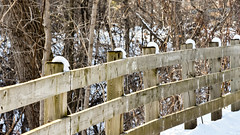 Snow capped fence posts in Spring (PJMixer) Tags: park snow toronto fence landscape spring nikon 52weekproject