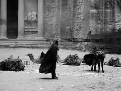 Bedouin in Petra - Jordan (beatricebiruspoli) Tags: portrait people bw animals ruins desert noiretblanc petra treasury culture donkey jordan camel camels bedouin giordania2014