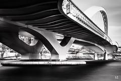 ombres et courbes (flo73400) Tags: longexposure bridge blackandwhite bw monochrome architecture noiretblanc nb le pont poselongue
