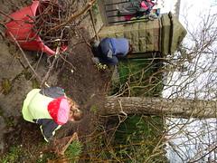 DSCN2201 (joonseviltwin) Tags: garden community mackintosh