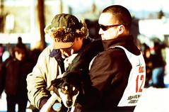 Porst SP Fairbanks Sled Dog Race 2 () Tags: winter dog snow alaska race fur sale sled fairbanks trapper 2014