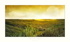 Land of hope (Terre d'espoir) (patrice ouellet) Tags: plaines indians saskatchewan plains sittingbull autochtones grasslandsnationalpark landofhope patricephotographiste parcnationaldesprairies