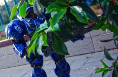 Special Tactics and Reconnaissance (BrickSev) Tags: fiction plant game scale toy toys actionfigure photography video marine power action outdoor space science armor actionfigures figure scifi sciencefiction collectible starcraft sixth figures armour collectibles sideshow powered terran tychus toyphotography