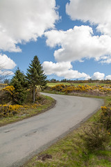 Round the bend ....been driven here a few times :-)) (Happy snappy nature) Tags: road uk trees clouds canon landscape shropshire bluesky 5d greengrass stiperstones canon24105f4