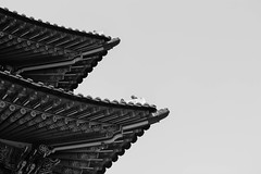 Palace Architecture (jjthibeau) Tags: blackandwhite architecture asian palace korea korean seoul southkorea palaces gyeongbok
