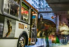 the 30 stockton (pbo31) Tags: sanfrancisco california street city urban color bus 30 spring movement nikon tunnel motionblur muni stop frenchquarter bayarea april roadway stocktonstreet 2016 boury pbo31 d810