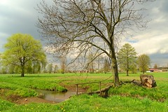 spring in the countryside (JoannaRB2009) Tags: trees shadow sky sunlight green grass weather clouds landscape spring view meadow poland polska wiosna lodzkie dzkie kaw bedwka