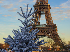 White Christmas Tree and Eiffel Tower 02  French Moments (French Moments) Tags: christmas paris france frankreich ledefrance eiffeltower noel toureiffel torreeiffel frankrijk nol eiffelturm natale francia parijs parigi trocadro nolparis frenchmoments christmasinparis