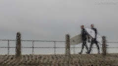 Southwick Surfers (Sue MacCallum-Stewart) Tags: windows rain weather sussex wind streetphotography surfers southwick