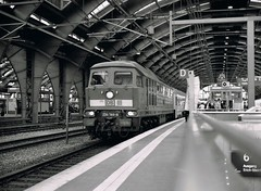Loco 234 144-4     Berlin     2006 (keithwilde152) Tags: blackandwhite berlin monochrome architecture train buildings germany diesel 2006 db express passenger locomotives stations br234