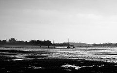 Low tide (fatfishimages) Tags: blackandwhite bw mono lowtide fishbourneharbour