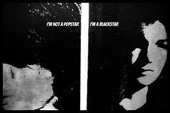 I'm not a Popstar, I'm a Blackstar (mArc ferr) Tags: paris museum lyrics sfmoma db exhibition muse collection exposition popart andywarhol tribute davidbowie blackstar jackiekennedy grandpalais rmn icnesamricaines